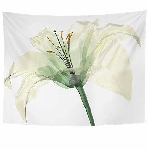 Ahawoso Tapestries 80 x 60 Inches Xray Glass Flower White Lily Floral Bloom Blossom Design Home Decor Tapestry Wall Hanging for Living Room Bedroom Dorm ()