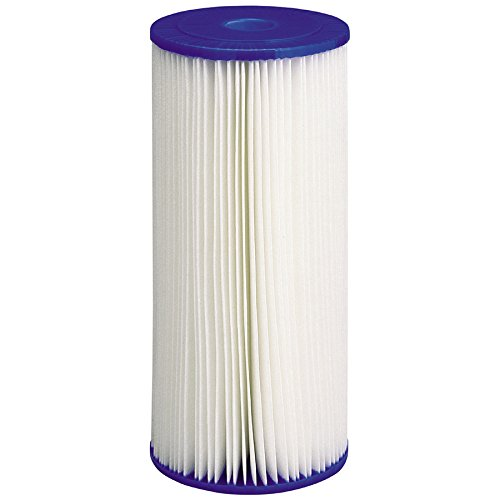 CULLIGAN R50-BBSA Pleated Filter Cartridge, 9-3/4In, 50 Mic