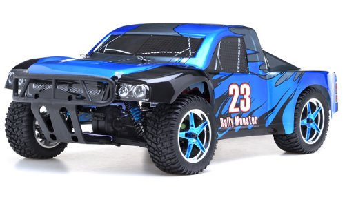 - 1/10th 2.4Ghz Brushless Exceed RC Rally Monster Electric RTR Racing Truck (DD Blue)
