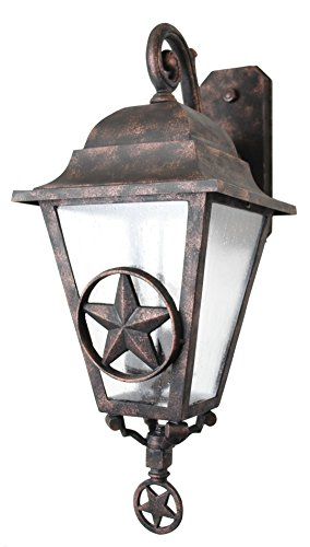 Lone Star Outdoor Wall Light in Florida - 5
