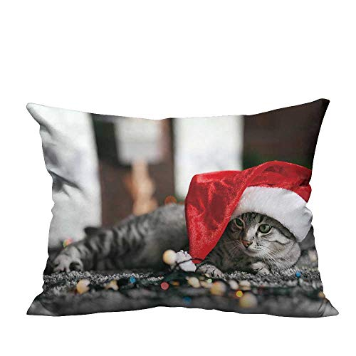 YouXianHome Decorative Couch Pillow Cases Beautiful cat Near Christmas Tree with Decoration Easy to Wash(Double-Sided Printing) 13.5x19 inch