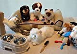 Activity Pet Shop with 5 Memorable Pets- for Memory Care Centers and Caregivers
