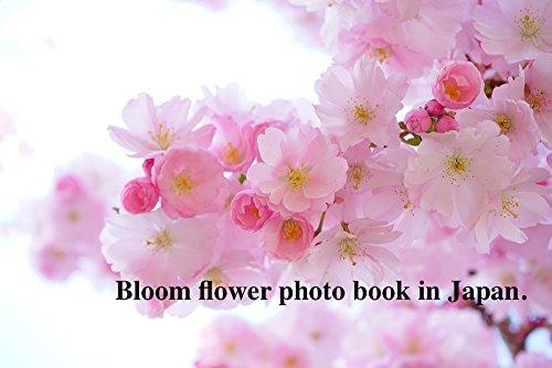 Bloom flower photo book in Japan. (Nao Flower)