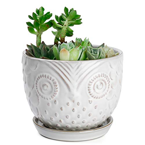 Greenaholics Plant Pot - 6.1 Inch Owl Ceramic Planters for Medium Plant,Ivy, Snake Plant, with Attached Saucer, Beige&Brown Grain