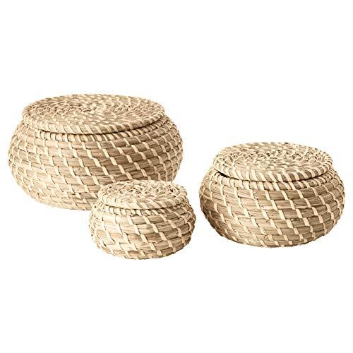 FRYKEN Box with lid set of 3 sea grass seagrass (Grass Ikea)