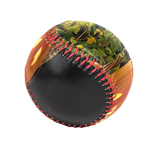 Baseballs Halloween Pumpkins Baseball Ball for League Play/Practice/Gifts]()