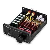 Nobsound Mini Dual TPA3116 Digital Power Amplifier