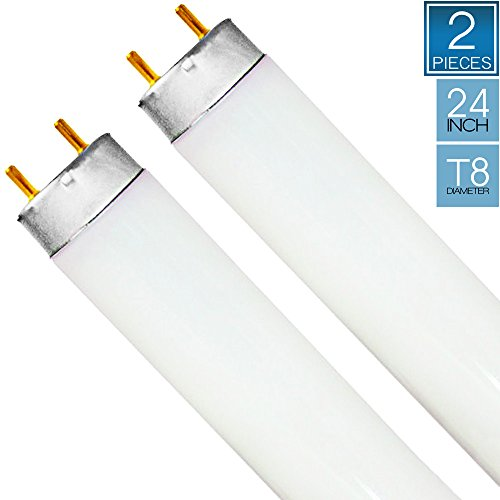 Luxrite F17T8/765 17W 24 Inch T8 Fluorescent Tube Light Bulb, 6500K Daylight White, 1350 Lumens, G13 Medium Bi-Pin Base, LR20755, 1-Pack