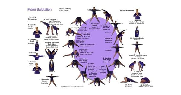 Amazon.com: Moon Salutation Reference Card (Serenity Yoga ...