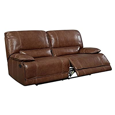 Furniture of America Evo Transitional Reclining Sofa in Brown
