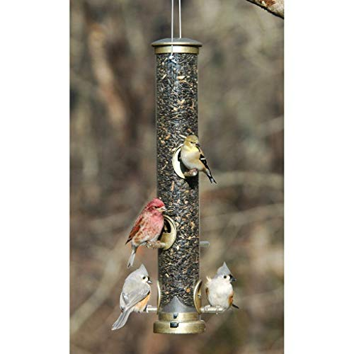 Aspects 396 Quick-Clean Seed Tube Feeder, Large - Antique Brass (Discontinued by Manufacturer)