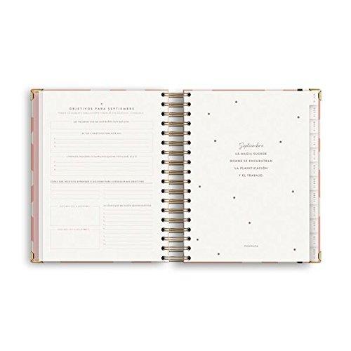 Charuca AG33 - Agenda 18-19, grande, color rosa: Amazon.es ...