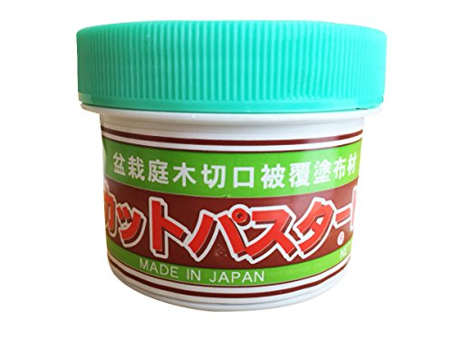 CUTPASTER Bonsai Cut Paste/Bonsai Pruning Compound 160g (Brown)