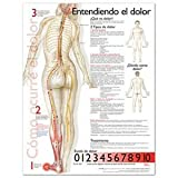 Understanding Pain Anatomical Chart in Spanish, Anatomical Chart Company Staff, 0781782295