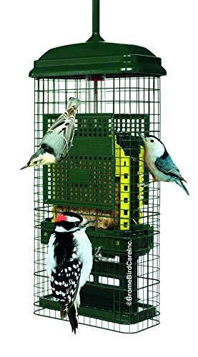 Most bought Backyard Birding & Wildlife