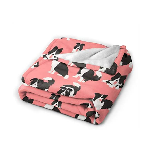 """WdRaIn Border Collie Dog Cute Blanket Flannel Fleece Blanket Soft Microfiber Blanket for Sofa Office Bed and Travelling 50""""x40"""" 2"""