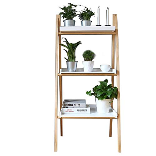 Jcnfa-Shelves...