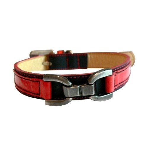 Puppy Leather Loki (The Cool Puppy XXL Loki Puppy Leather Dog Collar - Black and Red)