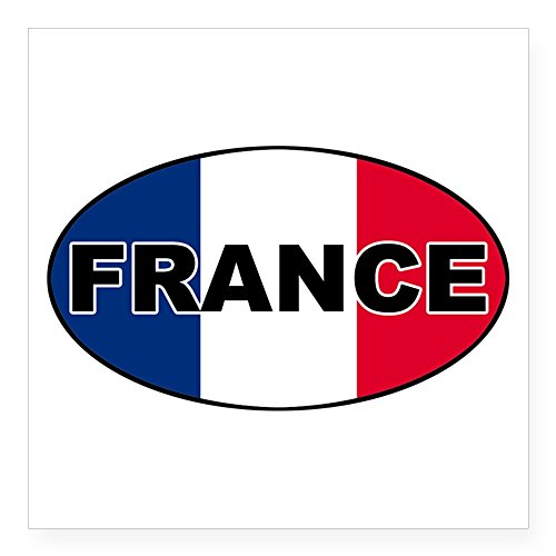 French Flag Photo - 8