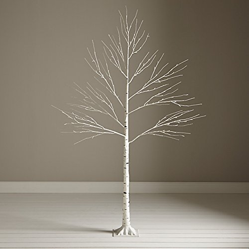 huge discount 185d5 a94f3 5 Foot White Birch Twig Tree: Amazon.co.uk: Kitchen & Home