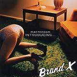 Introducing Brand X