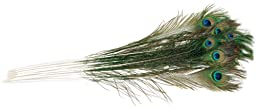 Zucker Feather Products Natural Peacock Eye, Natural, 12-Pack