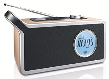 Philips - Radio (Portátil, Digital, 2 W, LR20, 1,5 V, 1,67 kg): Amazon.es: Electrónica