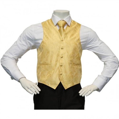 Amanti - Men's 4pc Set Paisley Tuxedo Vest Vest / Tie / Hanky / Bow Tie