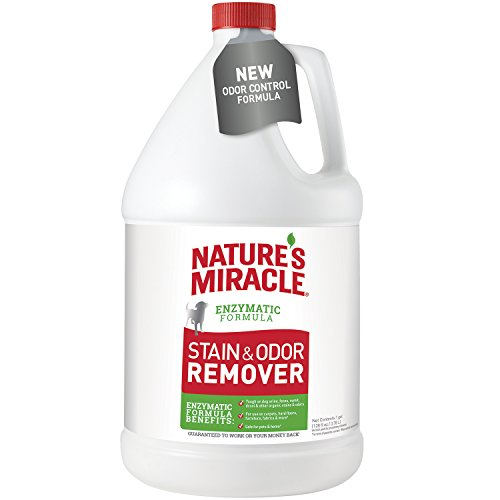 (Nature's Miracle Dog Stain and Odor Remover Pour, 128 fl. oz.)