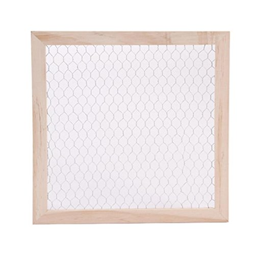 Darice 9190-9635 Unfinished Woo Chicken Wire Frame 12 X 12 (Wire Chicken Photo Frame)