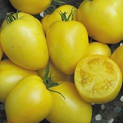 Powers Heirloom Tomato 20 Seeds Moon Gardens Simply Grown Beautifully