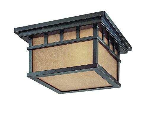 (Dolan Designs 9119-68 2Lt Winchester Barton 2 Ceiling Light)