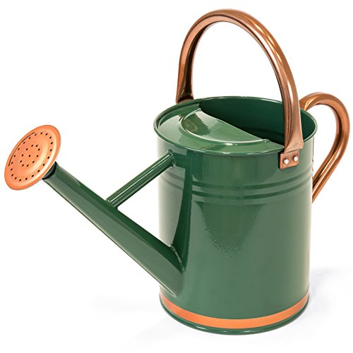 Best Choice Products 1-Gallon Lightweight Galvanized Steel Gardening Watering Can with O-Ring, Top Handle, and Copper Accents, Green ()