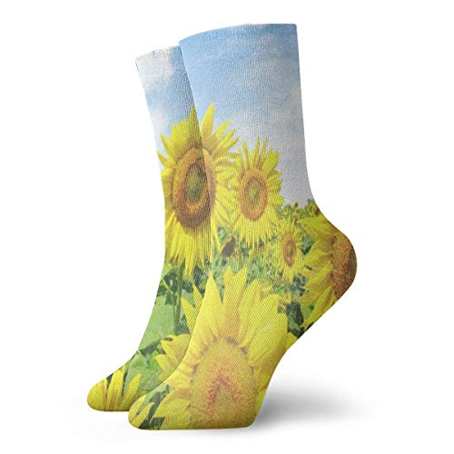 - Crew Socks Summer Sunflowers Hot Womens Stocking Decor Sock Clearance For Girls