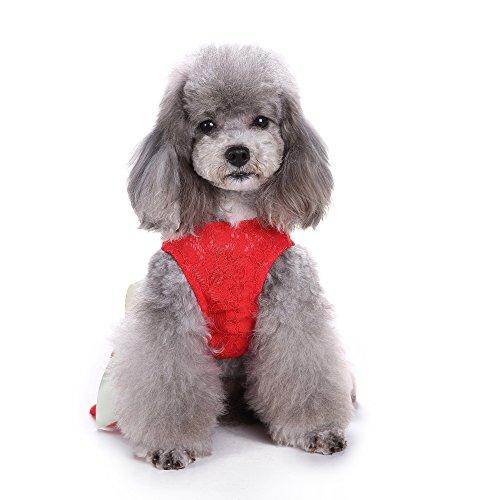 (S-Lifeeling Pink Sweet Pet Dog Dress Lace Ribbon Clothes Shirts)