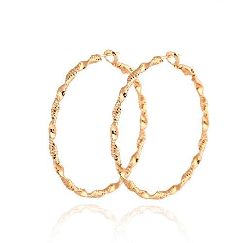 CS-DB 14K Gold Filled Twisted Rope Hoop Earrings ()