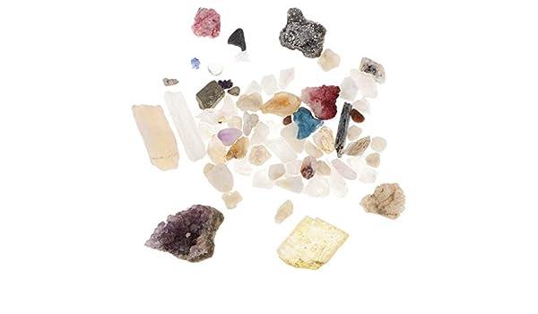 perfeclan Caja de Muestra de Minerales Cristales Regalo de Cumpleaños Navidad para Entusiastas de Ciencia: Amazon.es: Juguetes y juegos