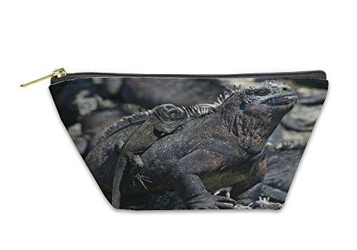 Gear New Accessory Zipper Pouch, Galapagos Marine Iguana And Baby, Large, 5595844GN by Gear New