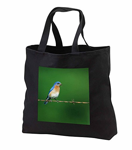 danita-delimont-bluebird-eastern-bluebird-male-on-barbed-wire-fence-with-food-illinois-tote-bags-bla