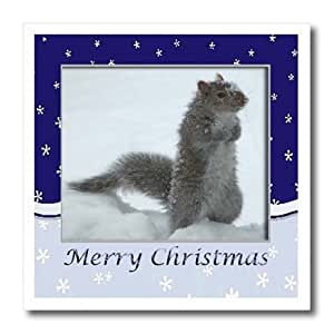 ht_15189_1 Beverly Turner Christmas Design and Photography - Squirrel in the Snow, Merry Christmas - Iron on Heat Transfers - 8x8 Iron on Heat Transfer for White Material