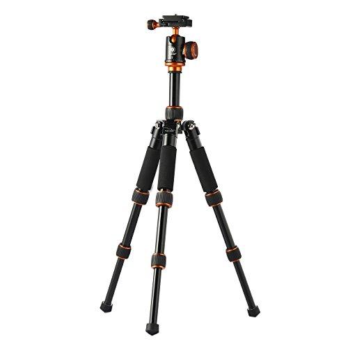 TARION Q166 Camera Tripod Desk Tripod with Ball Head Quick Release Plate for DSLR Camera Mini Tripod