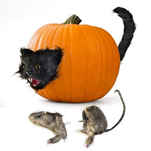 Halloween Set Decorations (Prextex Halloween Creepy Scary Cat and Furry Rat Heads & Tails Spooky Pumpkin Prop Décor Fun & Creepy Jack-O-Lantern)