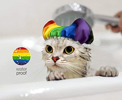 New Rainbow Kitten Trucker Hat Black//White Cap Gay Lesbian LGBT Cat Meow KT T169