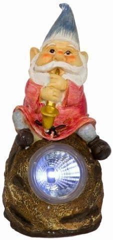 Energía Solar gnomos de jardín música LED brillante, Gnome With Horn: Amazon.es: Jardín