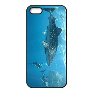 Rhincodon typus Hight Quality Plastic Case for Iphone 5s