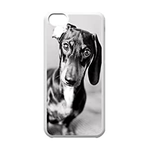 Custom Colorful Case for Iphone 5C, Cute Dog Dachshund Cover Case - HL-693374
