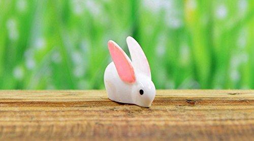 Cheap 6 pcs Miniature Cute White Rabbits Fairy Garden Animal Ornament Terrarium Supplie