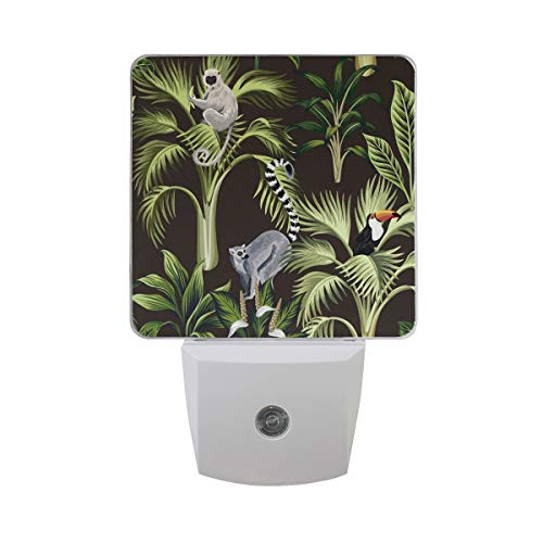 2 Pack Plug-in LED Night Light Madagass Animal Funny Zoo Lamp with Dusk to Dawn Sensor for Hallway Kitchen Bedroom Stairs (Zoo Lamp Baby)