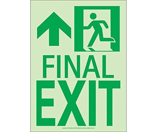 Final Exit Sign - National Marker 50F-3SN-L Final Exit Sign