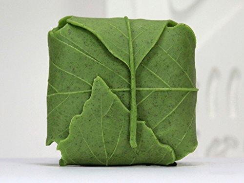 (Leaf Square Nature Handmade Soap Silicone)